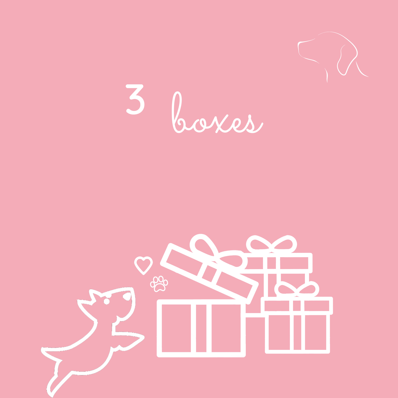 H&H-3 boxes
