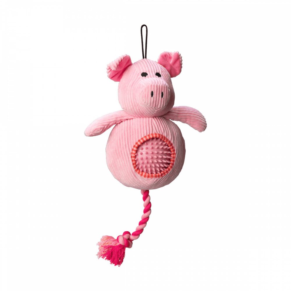 HOP - Clever Pig