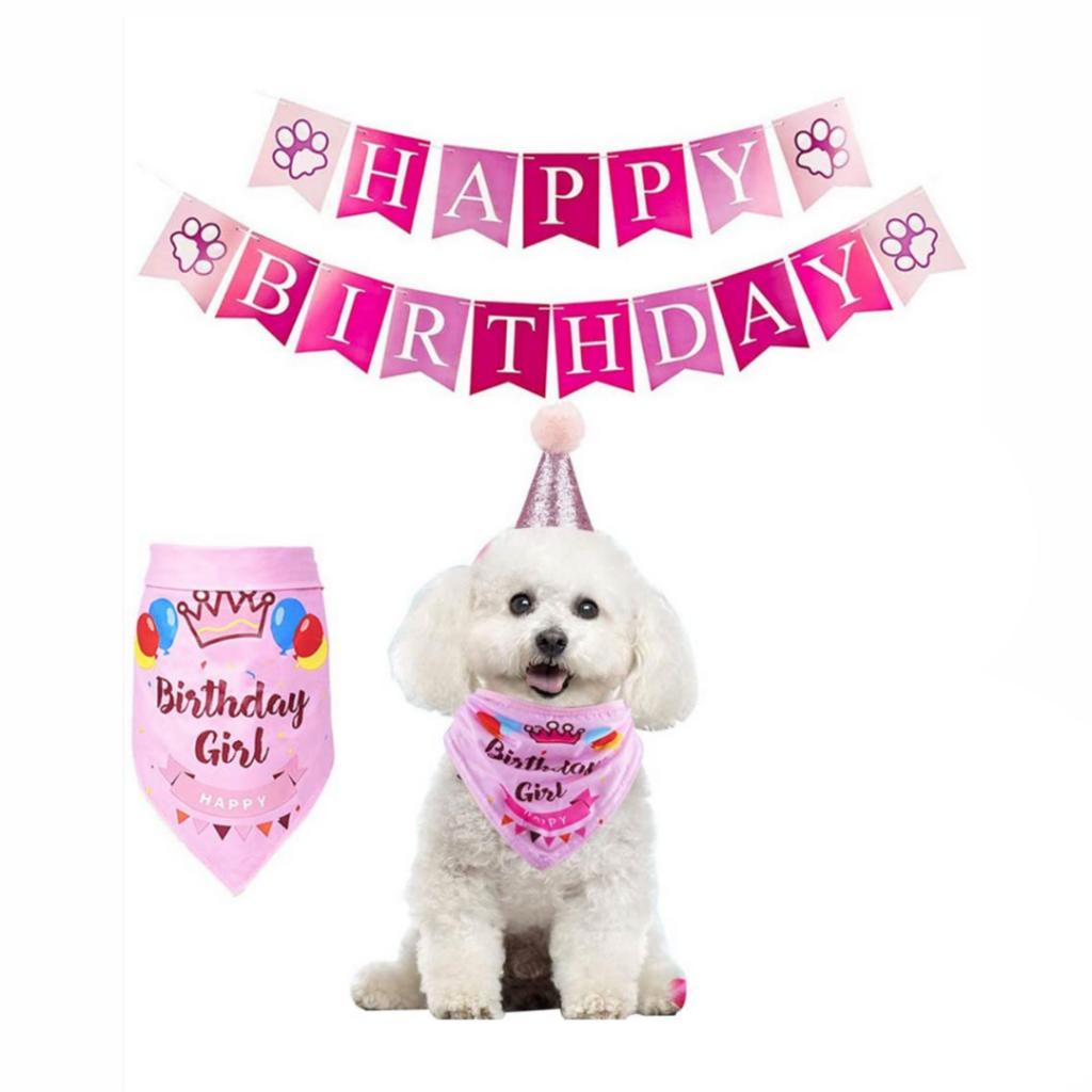 Birthday Girl Bandana and banner - For Dogs