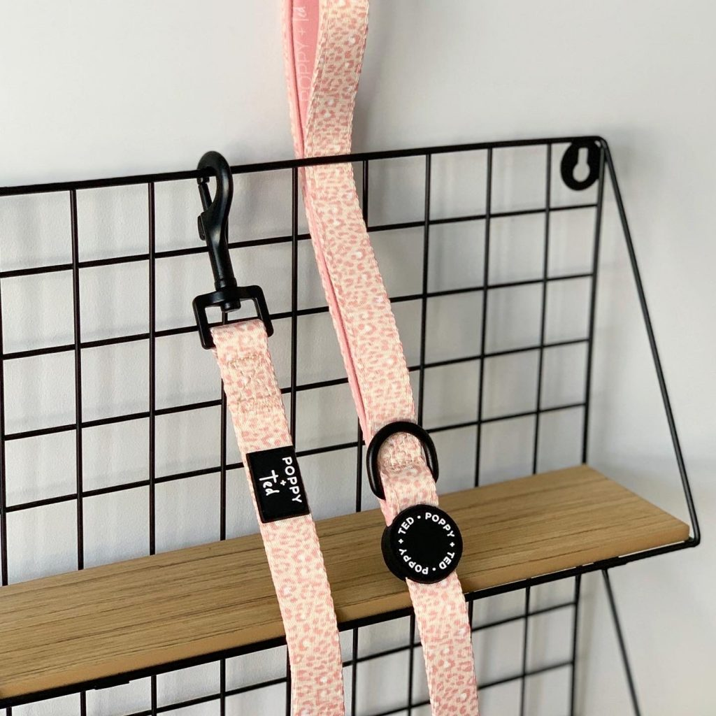Poppy + Ted   Pink Panther Walk & Wear Lead