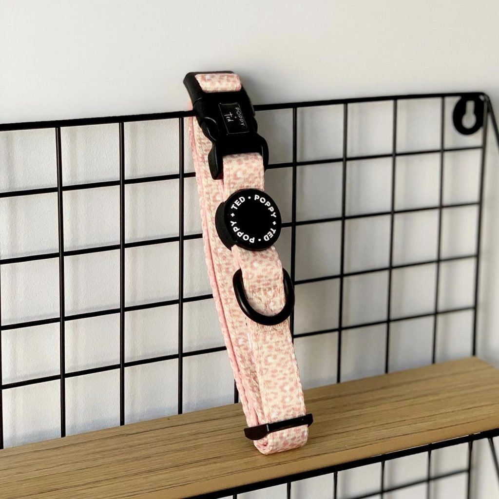 Poppy + Ted   Pink Panther Walk & Wear Collar